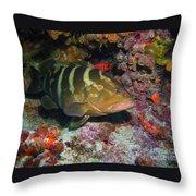 Grouper Throw Pillow