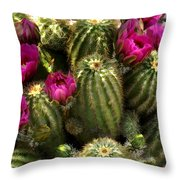 Grouping Of Cactus With Pink Flowers Throw Pillow