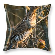 Grouse In An Apple Tree Throw Pillow