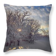 Grove And Road - Winter Throw Pillow