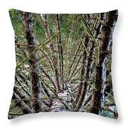 Growing Pine Throw Pillow