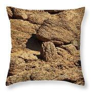 Growing Rock Throw Pillow