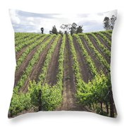 Growing Season Throw Pillow