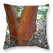 Growing Through The Fence Throw Pillow