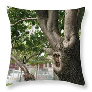 Growth On The Survivor Tree Throw Pillow