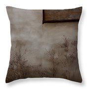 Growth To Unlock  Throw Pillow