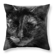 Grumpy Girl Throw Pillow