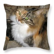 Grumpy Kitty With Emerald Eyes Throw Pillow