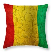 Grunge Guinea Flag Throw Pillow