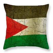 Grunge Jordan Flag Throw Pillow