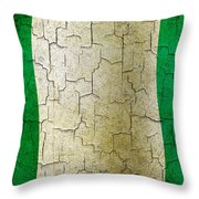 Grunge Nigeria Flag Throw Pillow