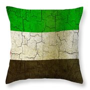 Grunge United Arab Emirates Flag Throw Pillow