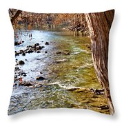 Guadalupe River View Throw Pillow