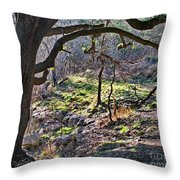 Guadalupe State Park Throw Pillow