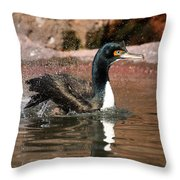 Guanay Cormorant Throw Pillow