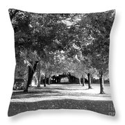 Guarded Pathway Throw Pillow