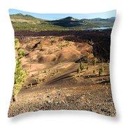 Guardian Of The Dunes Throw Pillow