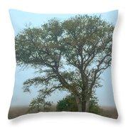 Guardian Of The Fog Throw Pillow