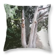 Guardian Of The Path Throw Pillow