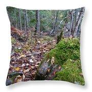 Guardian Rock Throw Pillow