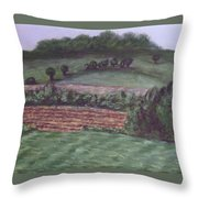Guardians Of Hanover Throw Pillow