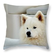 Guarding The Boat Throw Pillow