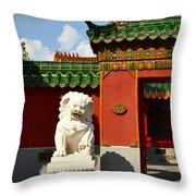 Guarding The Gate Throw Pillow