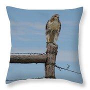 Guarding The Prairie Throw Pillow