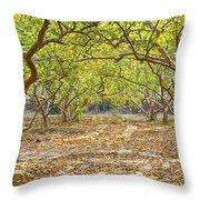 Guava Garden In Autumn Throw Pillow