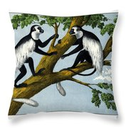 Guereza Monkey Throw Pillow