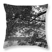 Guggenheim And Trees In Black And White Throw Pillow