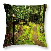 Guide My Path Throw Pillow