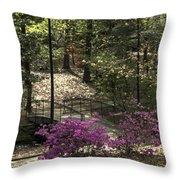 Guignard Park-2 Throw Pillow