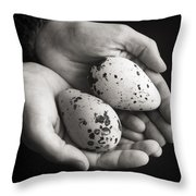 Guillemot Eggs Black And White Throw Pillow