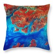 Guinea Bissau Throw Pillow