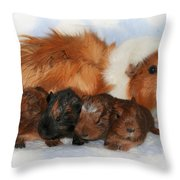 Guinea Pig Family Throw Pillow