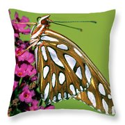Gulf Fritillary Butterfly Agraulis Throw Pillow