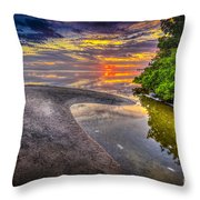 Gulf Stream Throw Pillow