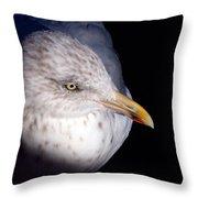 Gull #2 Throw Pillow