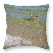 Gull Floating Throw Pillow