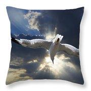 Gull Flying Under A Radiant Sunburst Throw Pillow