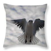 Gull From Below Throw Pillow