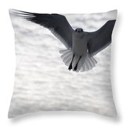 Gull From The Heavens Throw Pillow