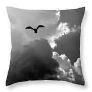 Gull In Flight Mb059bw Throw Pillow