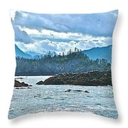 Gull Island Rookeries In Kachemak Bay-alaska Throw Pillow