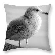Gull On The Pier 2 Throw Pillow