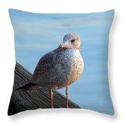 Gull On The Pier Throw Pillow
