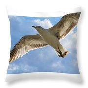 Gull - Out Of Bounds Throw Pillow