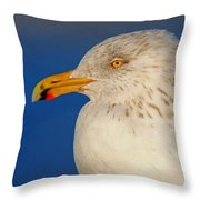 Gull Portrait Throw Pillow