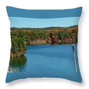 Gull With Splendid View Throw Pillow